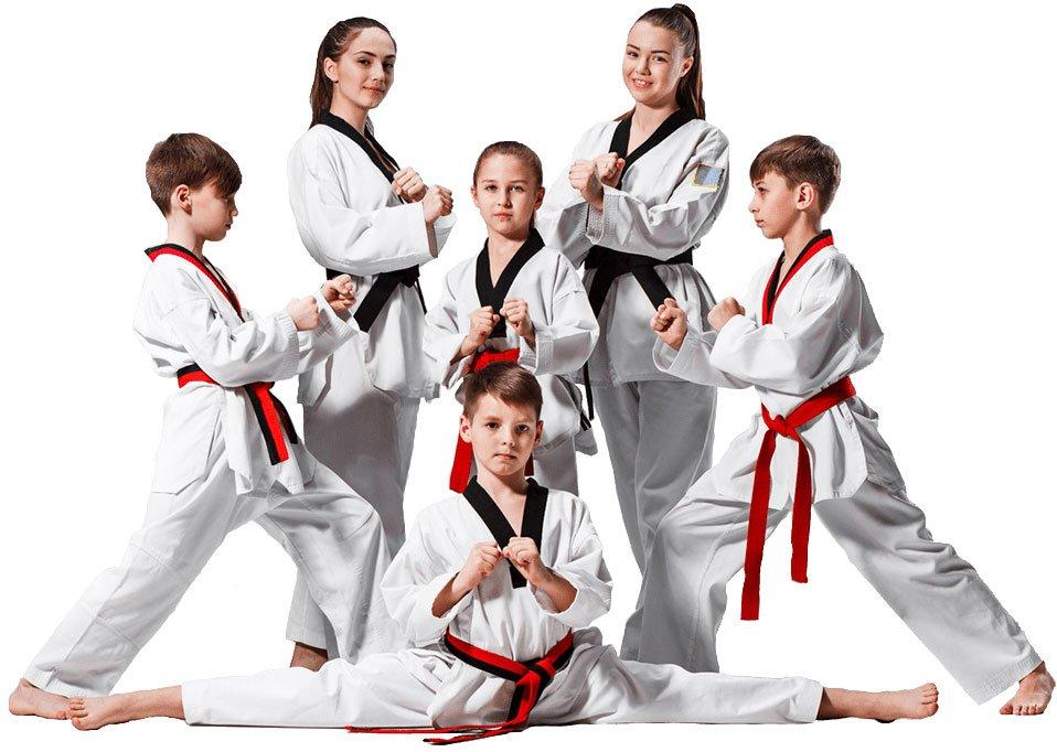Taekwondo savez Bosne i Hercegovine
